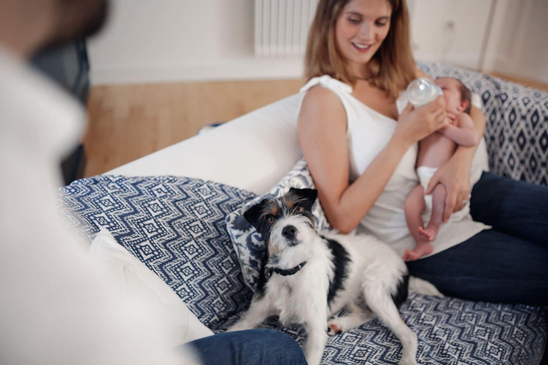 le chien de famille participe à la séance photo