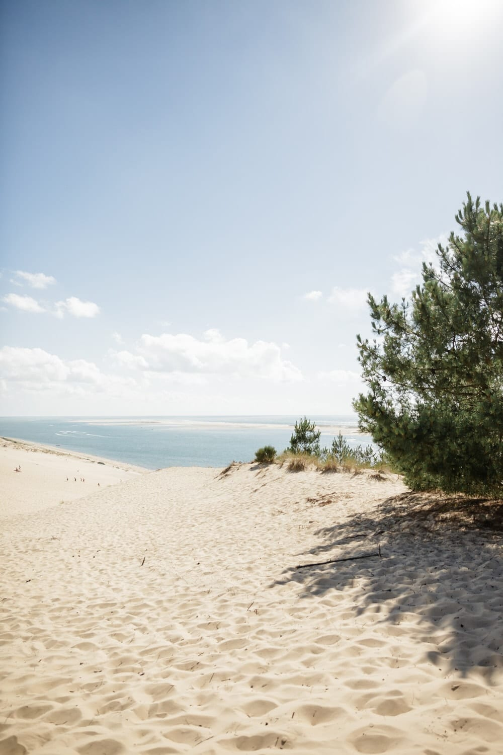 photo depuis a dune du pilat