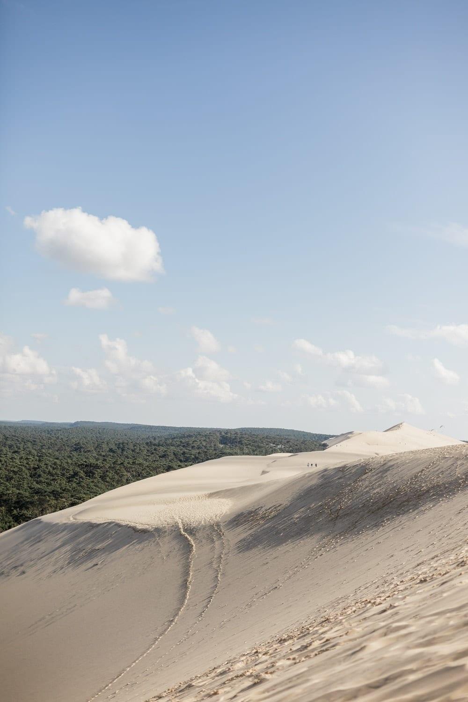 dune du pyla et canopée